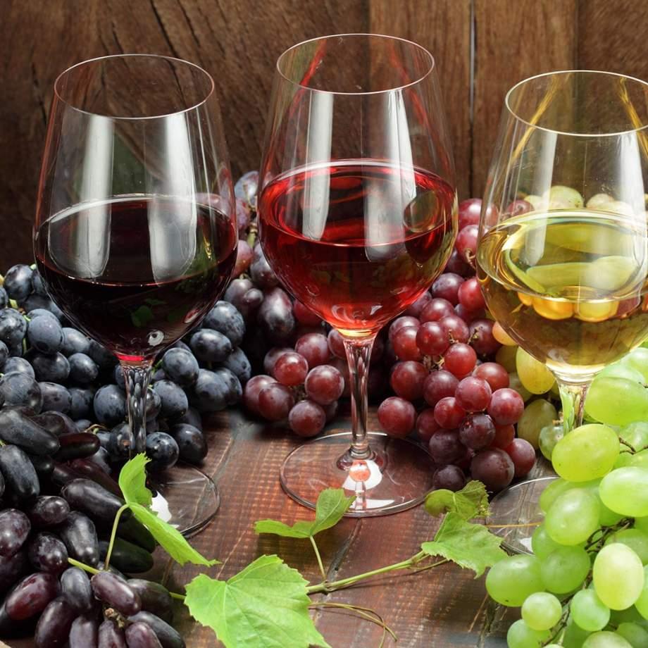 vins frissant